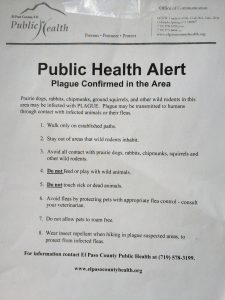 Bubonic Plague in eastern Colorado